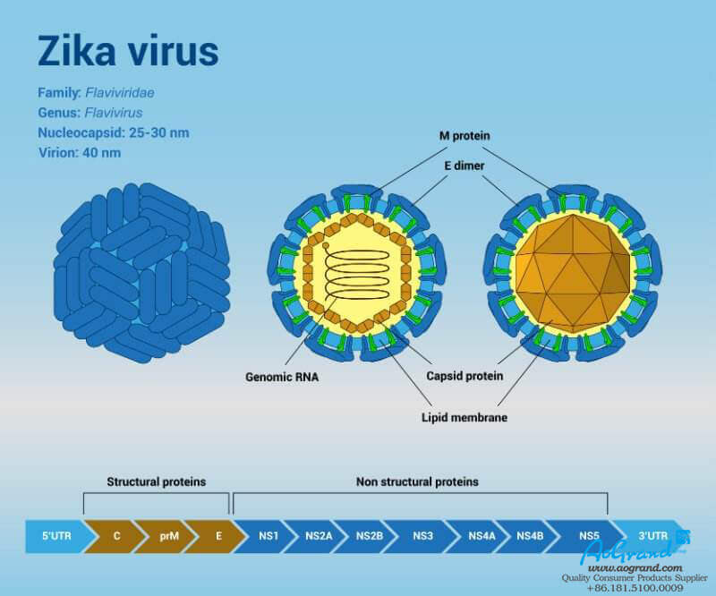 Know-Zika-Virus-More